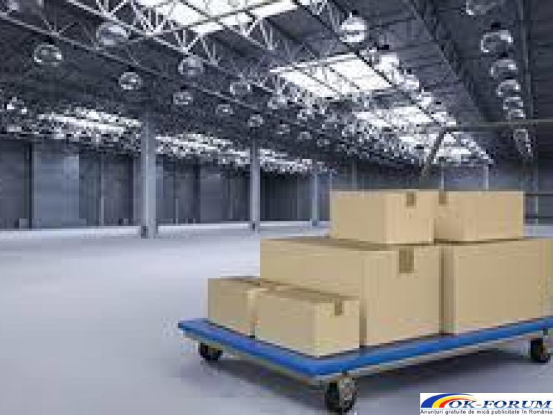 Servicii profesionale de relocari industriale, firme, birouri etc - 2