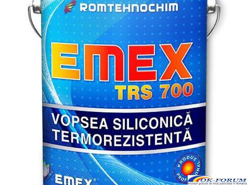 Vopsea Termorezistenta Siliconica EMEX TRS 700 - 1