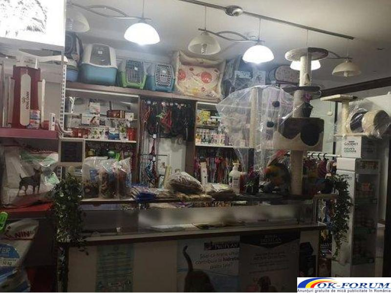 Armonia Studio - Cabinet Veterinar servicii medicale - 5