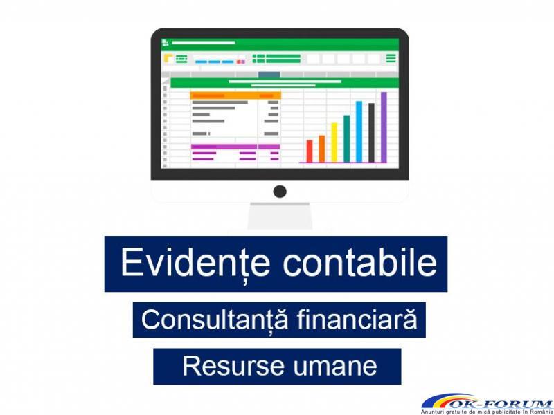 Servicii contabile în Vrancea - 1